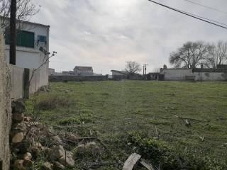 Terreno Vendita Ciudad Rodrigo