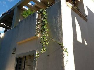 Foto - Casa pareada Calle Axarquia, 350, Coín