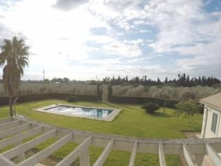 Foto - Casa rústica, nuevo, 800 m², Son Ferriol, Palma de Mallorca